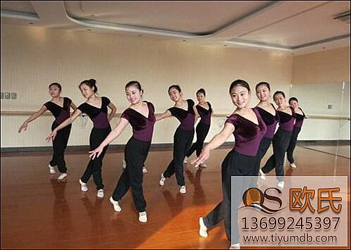舞蹈房木地板